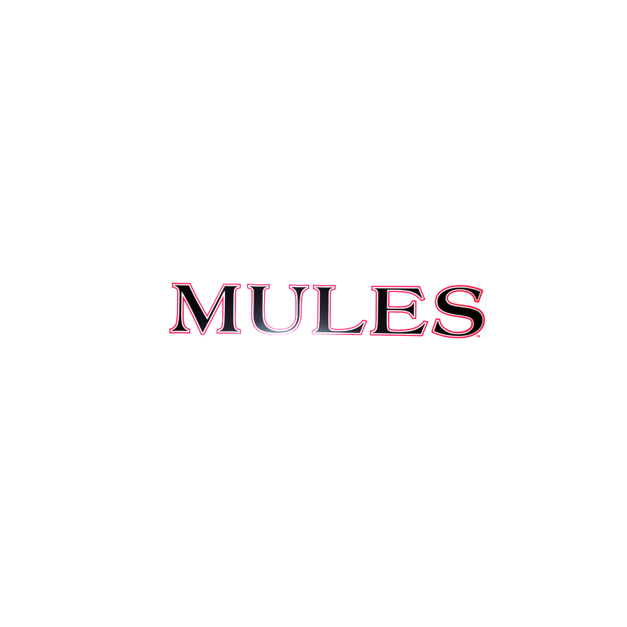 "Image For MULES DECAL <font color=""red"">Clearance</font>"