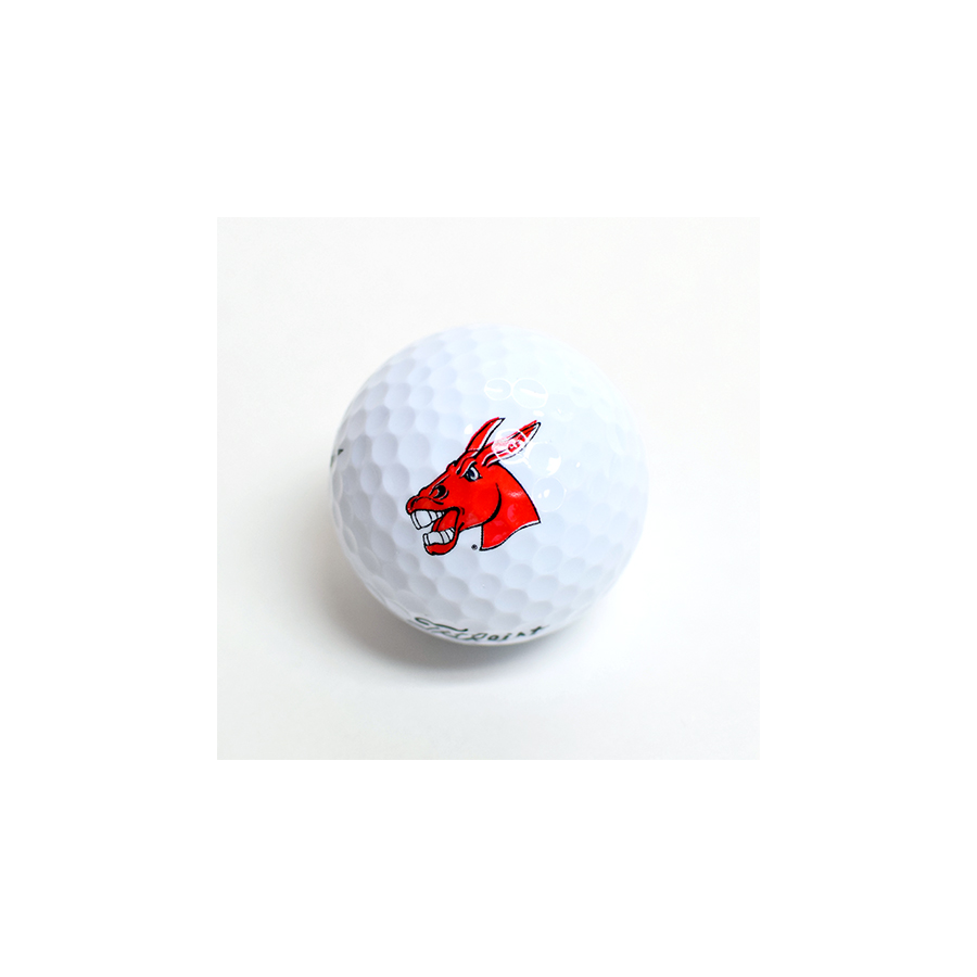 Image For MULES TITLEIST GOLF BALLS