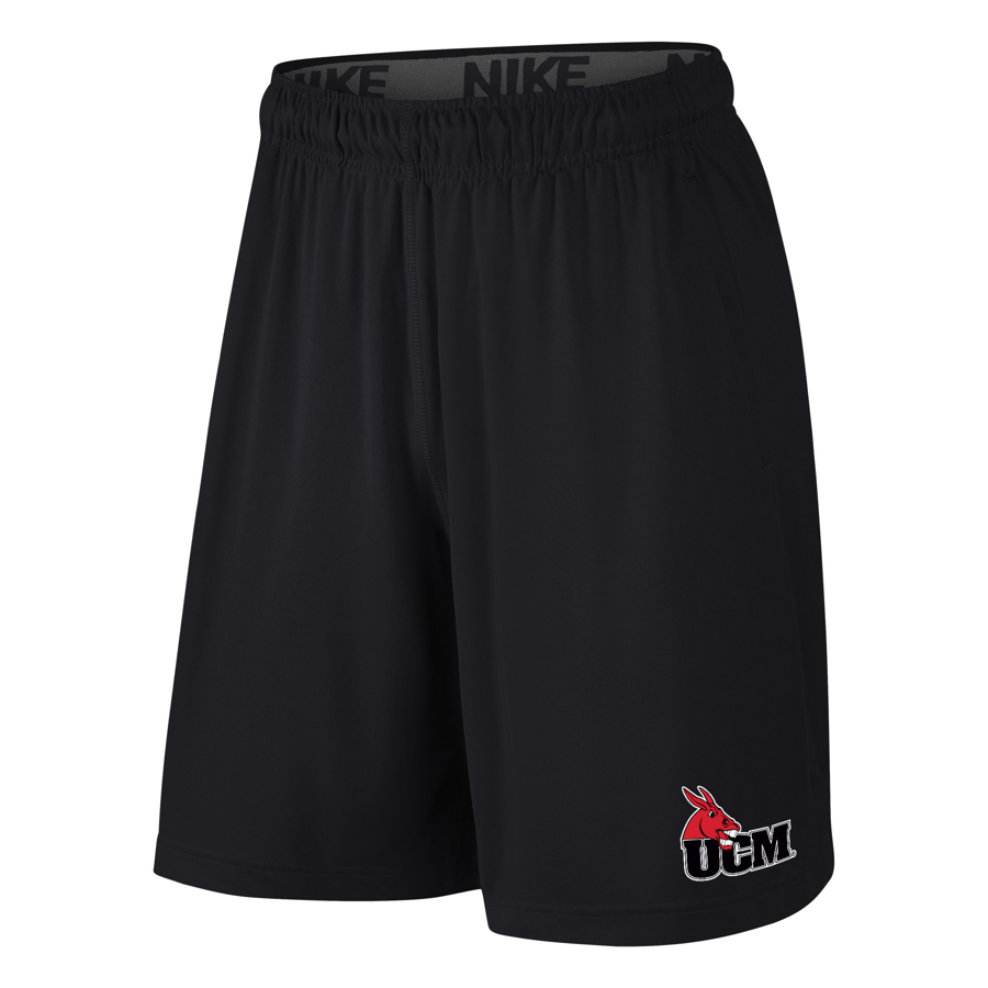 Image For BOYS NIKE FLY SHORTS
