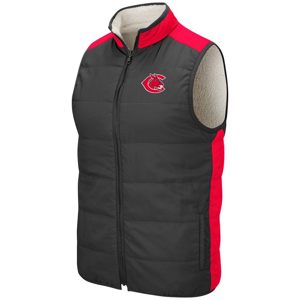 Image For COLOSSEUM UCM REVERSIBLE VEST